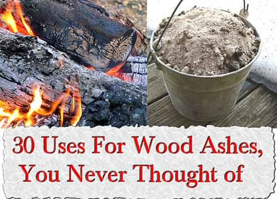 30 Uses For Wood Ashes, You Never Thought of - LivingGreenAndFrugally.com