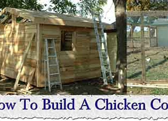 How To Build A Chicken Coop From Pallets - LivingGreenAndFrugally.com