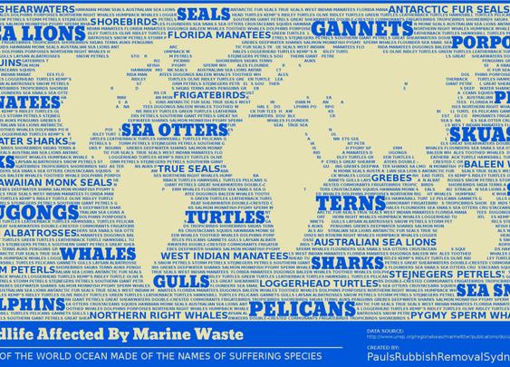 Marine Rubbish Map / Infographic