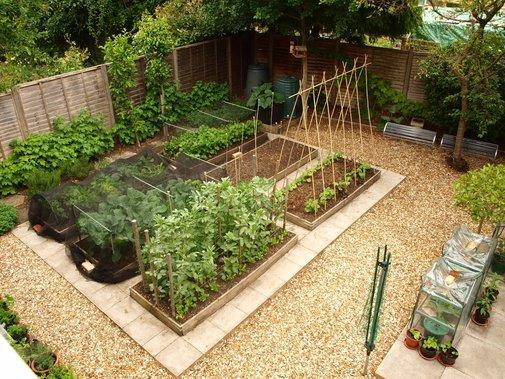 10 useful gardening tips