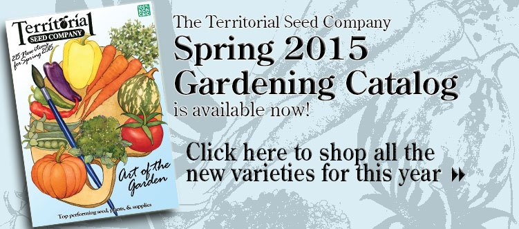 Vegetable Seeds, Flower Seeds, Herb Seed, Garden Seed - Territorial Seed Company