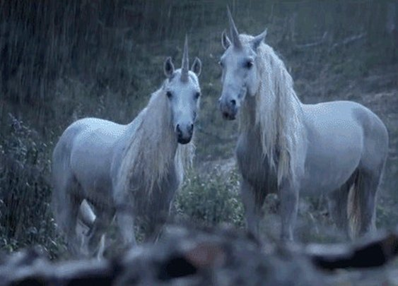 Hilarious ad explains why unicorns disappeared