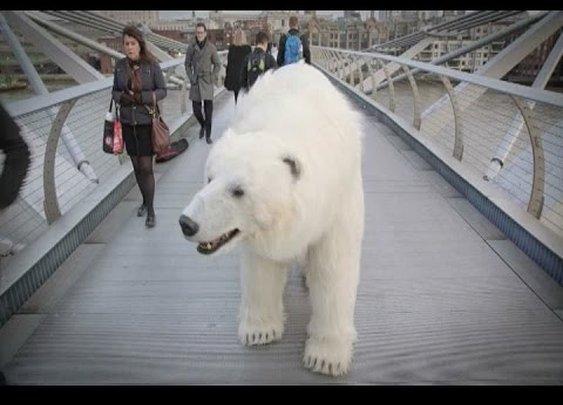 Frightening polar bear roams around London for 'Fortitude' promo - YouTube