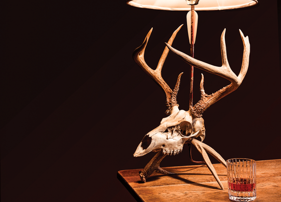 How to Make Your own Euro Skull Lamp
