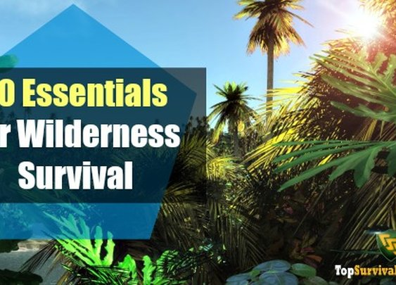 Do you know the 10 Essentials of Wilderness Survival?