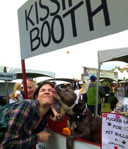 11 Smoochy Pit Bulls In Kissing Booths