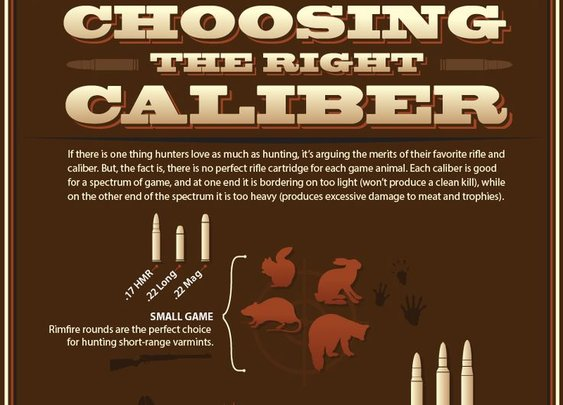 How to Choose the Best Rifle Caliber for Hunting