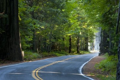 The Best Motorcycle Rides of Northern California