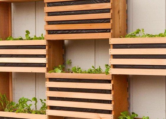 Build a sweet vertical garden