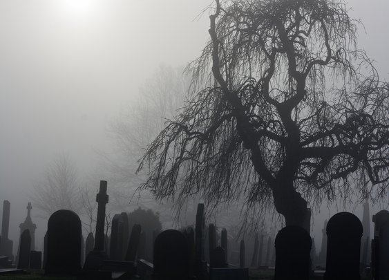 What Happens If a Cemetery Goes Under?