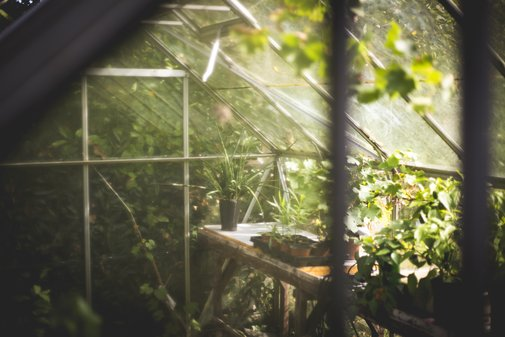 7 Reasons Preppers should have a Garden! | Beat The End Survival Blog