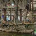 The Bass Pro Shops Hunting Mega-Store Has a Pistol Range, a Hotel, and an Alligator Swamp - Bloomberg Business