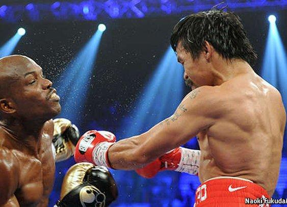 The Economist explains: How a knockout punch works