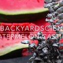 Watch It's CRAZY what happens when you pour molten aluminum in a watermelon @ Komando Video