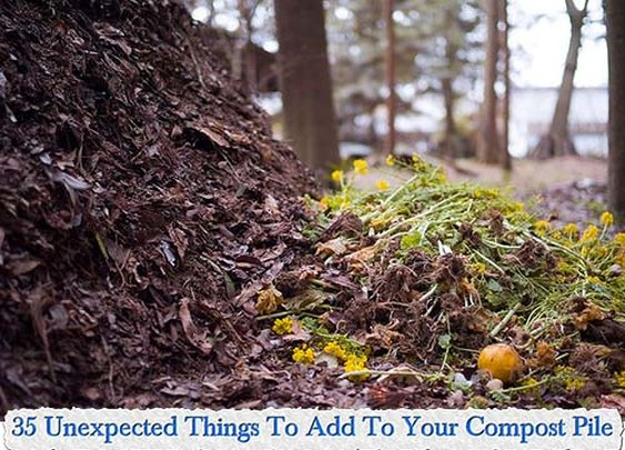 35 Unexpected Things To Add To Your Compost Pile