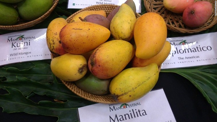 Where can you find the 'perfect mango'? - CNN.com
