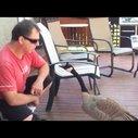 Honky Talk Goose - YouTube