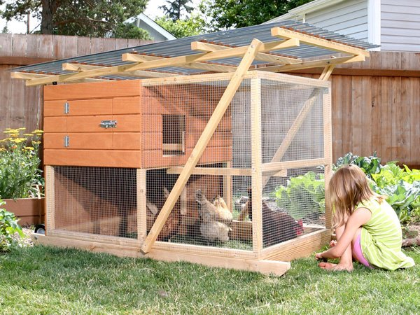 So We Have Chickens -- Chicken Coop Plans