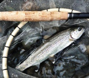 """Tenkara Presentation, Really """"Fishing"""" The Fly 