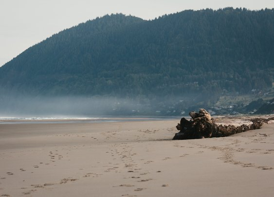 10 Awesome Places To Camp on Oregon's Coast - That Oregon Life