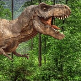 There is only 1 T-Rex at Jurassic World