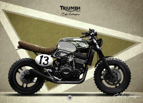 TRIUMPH TRIDENT 900 | Pinterest
