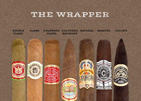 Cigar 101! Get your Cigar Game on Track!