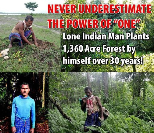 Lone Indian Man Plants 1360 Acre Forest By Himself Over 30 Years