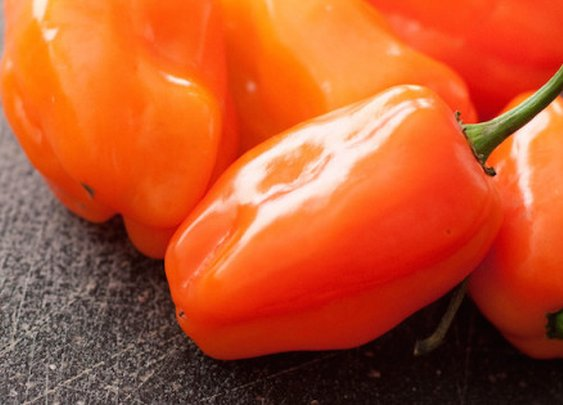 Habanero Vs. Jalapeño: PepperScale Showdown
