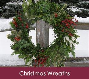 Fresh Christmas Wreaths, Trees and garland | Premium Christmas Wreaths