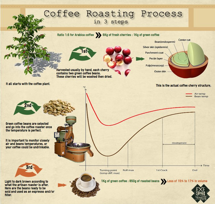 Coffee roasting process – infographic