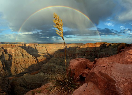 Western Rim, Grand Canyon, After a Rain