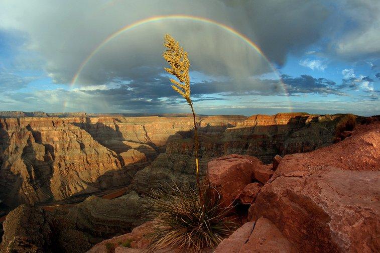 Western Rim, Grand Canyon, After a Rain