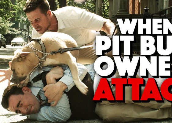 How to Defend Yourself Against a Pit Bull Owner Attack