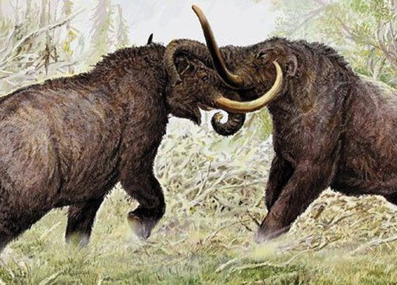Henry Tukeman:  Mammoth's Roar was Heard All The Way to the Smithsonian