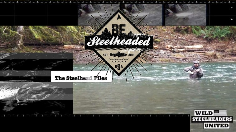 Saturday Shoutout / Wet And Wild | Fly Fishing | Gink and Gasoline | How to Fly Fish | Trout Fishing | Fly Tying | Fly Fishing Blog
