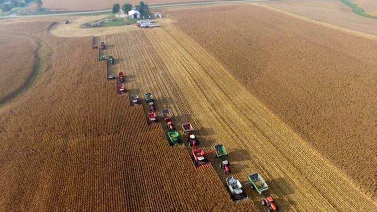 Community helps farmer with terminal cancer reap harvest in record time