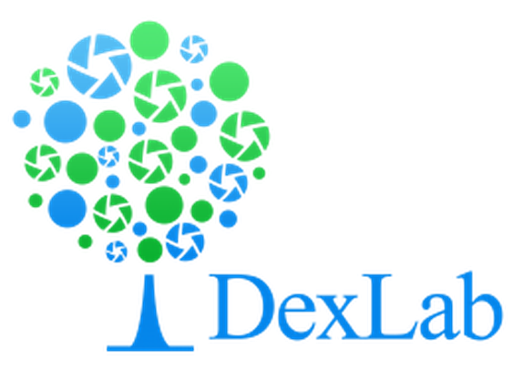 DexLab Analytics - SAS, Predictive Analytics, R Programming, Big Data Hadoop, Ms Excel, Business Analytics