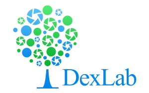 DexLab Analytics - SAS, Predictive Analytics, R Programming, Big Data Hadoop, Ms Excel, Business Analytics
