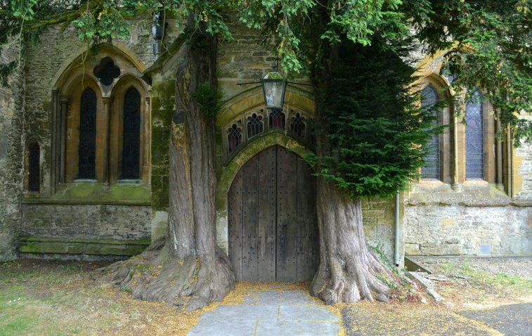 Old World Architecture: Doors of England