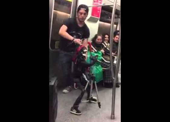 Puppet Performs Guns N Roses on Subway