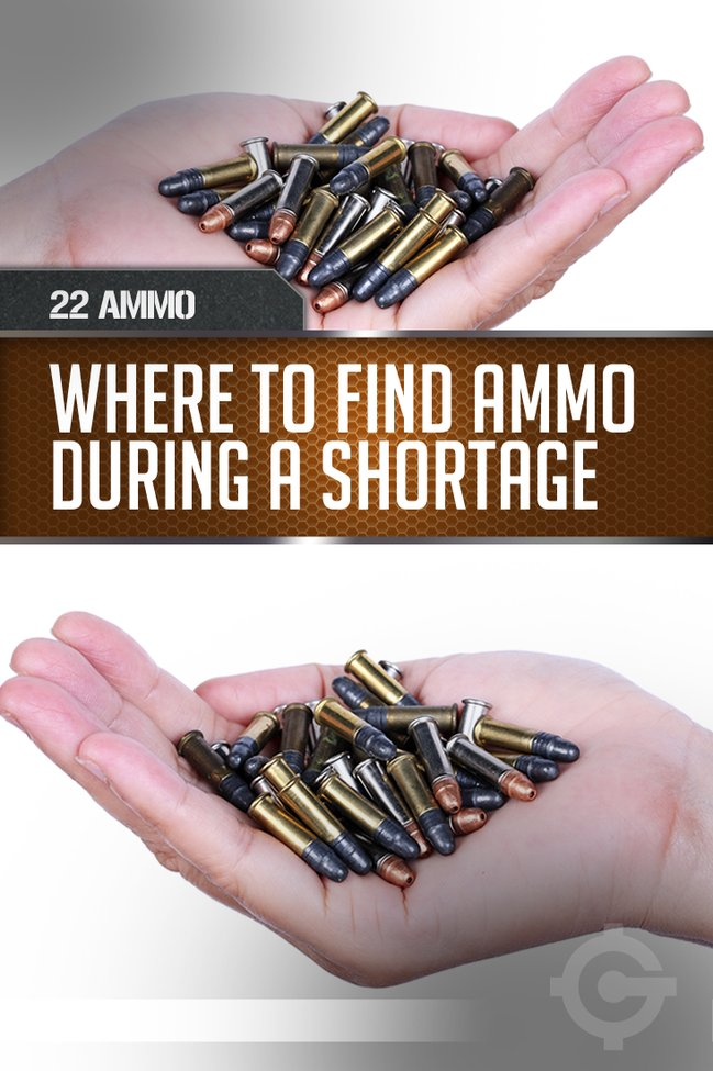 22 Ammo Shortage | Lessons from the Ammunition Shortage