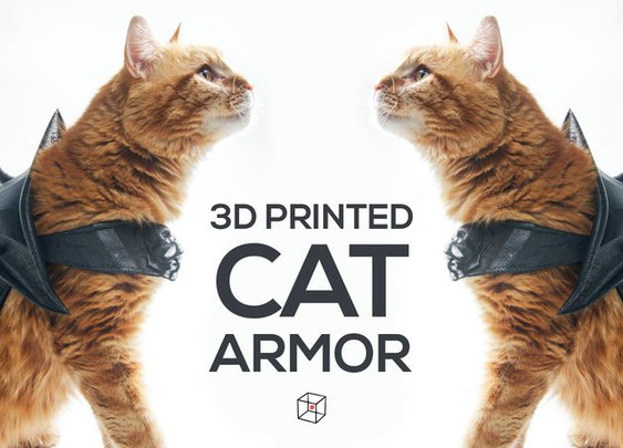 At Long Last: 3D Printed Cat Armor