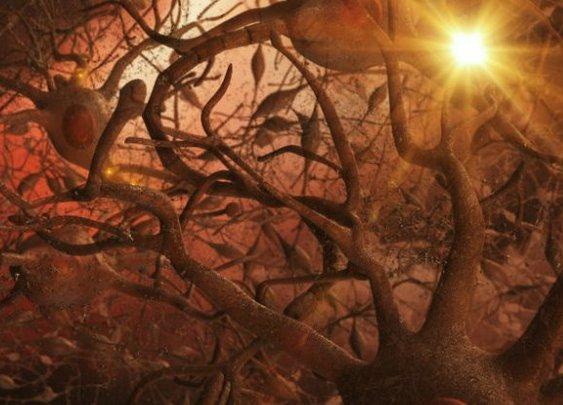 New Alzheimer's treatment fully restores memory function - ScienceAlert