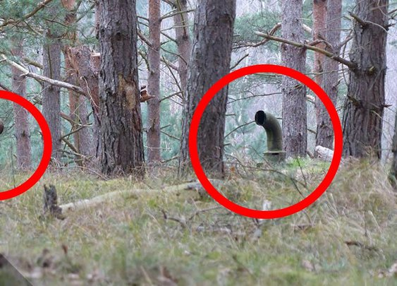 5 Creepiest Things Found in the Woods - Dark5 - YouTube