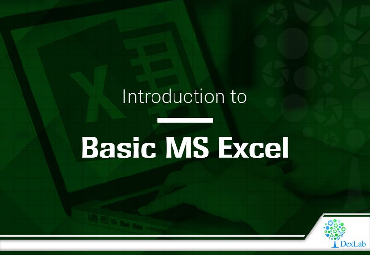 Introducing Excel