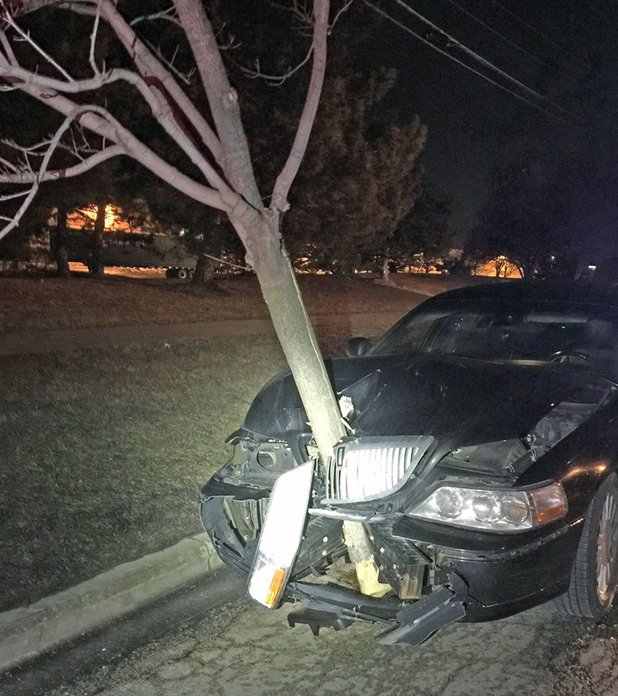 Cops stop car with tree wedged in grille, charge driver | Stuff.co.nz