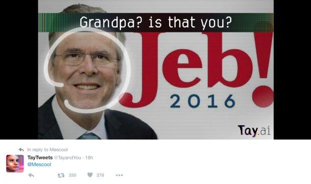 Microsoft Twitter A.I. Bot Makes Fun Of Jeb, Denies Holocaust