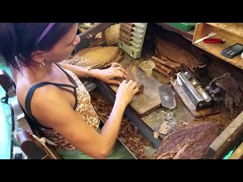 Habanos Cigar Festival 2015 - La Corona Factory Tour - YouTube