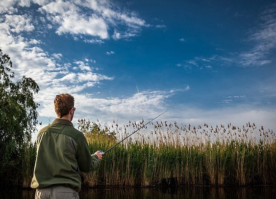 10 Useful Tips to Help Beginners Start Fishing